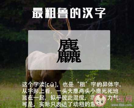 2020关于中文语言日宣传活动报道美篇 2020中文语言日主题活动报道稿大全