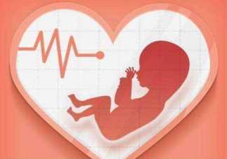 年龄越大越容易出现胎停育吗 胚胎停育后多久才能够再次备孕