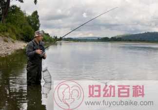 夏天钓鱼钓深水还是潜水 夏天闷热天气如何钓鱼