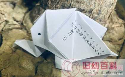 世界大象日文案句子 保护大象的朋友圈文案