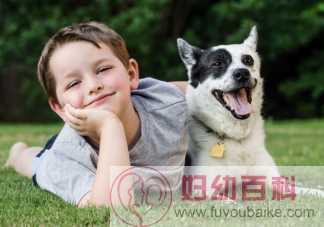 怎么根据孩子年龄养宠物 适合孩子养的宠物有哪些