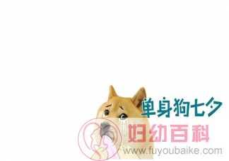 2020适合七夕单身狗发朋友圈幽默搞笑文案 关于单身幽默段子简短句子大全