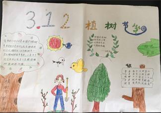 2019小学植树节手抄报 植树节小学全年级手抄报模板