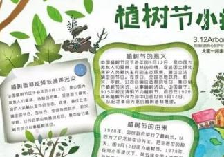 植树节手抄报模板内容 植树节手抄报资料内容2019