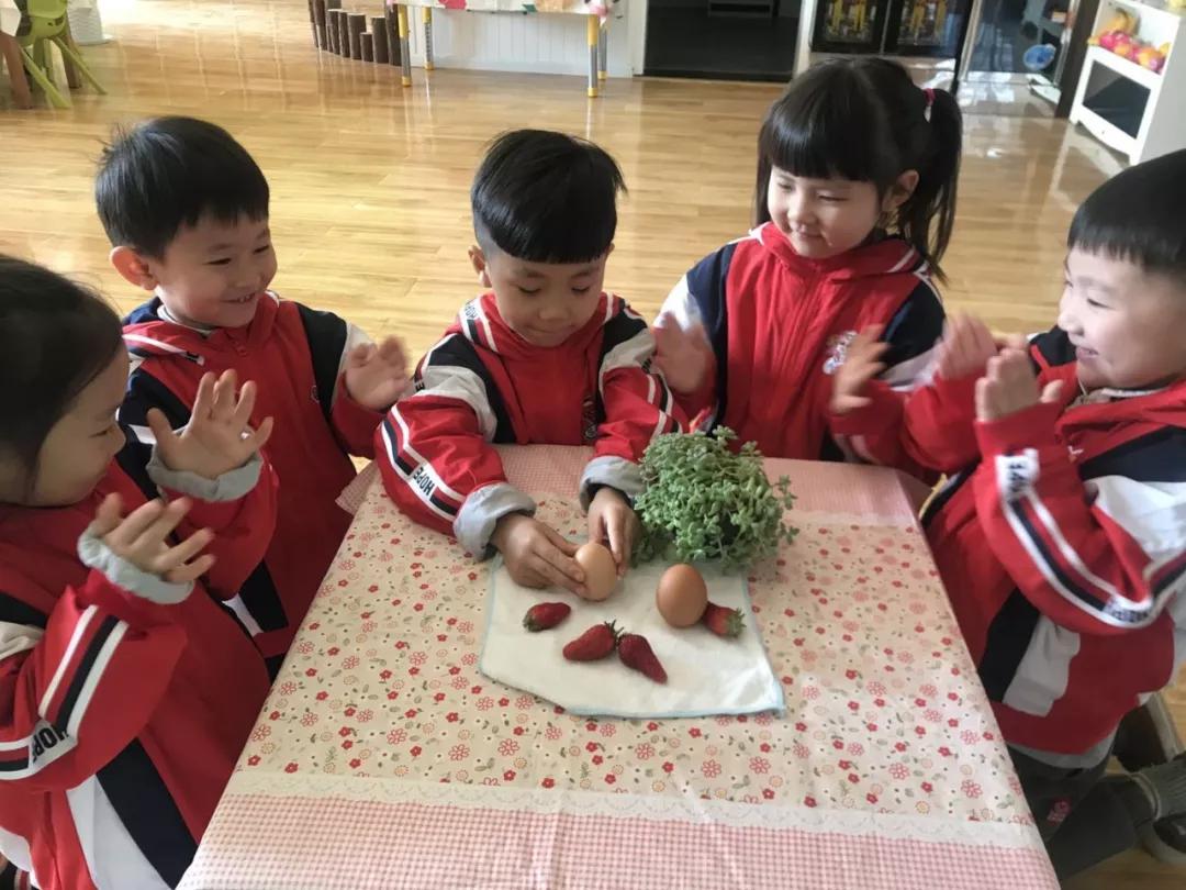幼儿园春分活动流程安排 幼儿园春分怎么过比较好