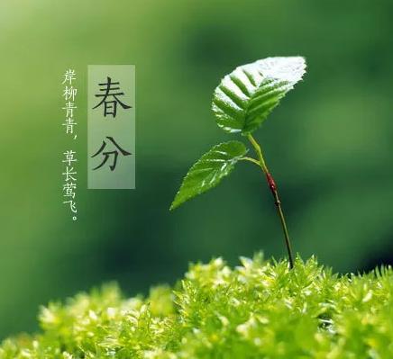 今日春分快乐说说2019 今日春分快乐祝福语