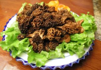 羊肚菌辅食怎么做好吃 羊肚菌辅食大全