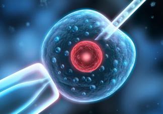 子宫内膜厚度多少正常 子宫内膜怎么才能留住胚胎